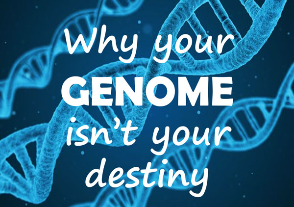 my genome myself A life decoded: my genome: my life [j craig venter] i can ascribe much of that fault to myself as my knowledge of microbiology, genetics and bioinformatics is highly limited read more published 2 months ago james w edwards.